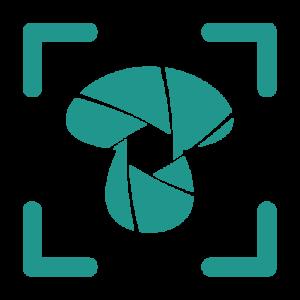 Fotografia we Wrocławiu - logo kgfotografia.pl
